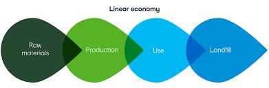 Polimeri e Green Economy